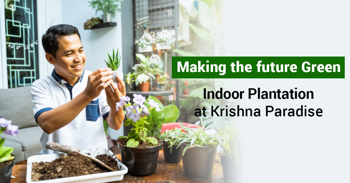 Making the future green – Indoor plantation at Krishna Paradise